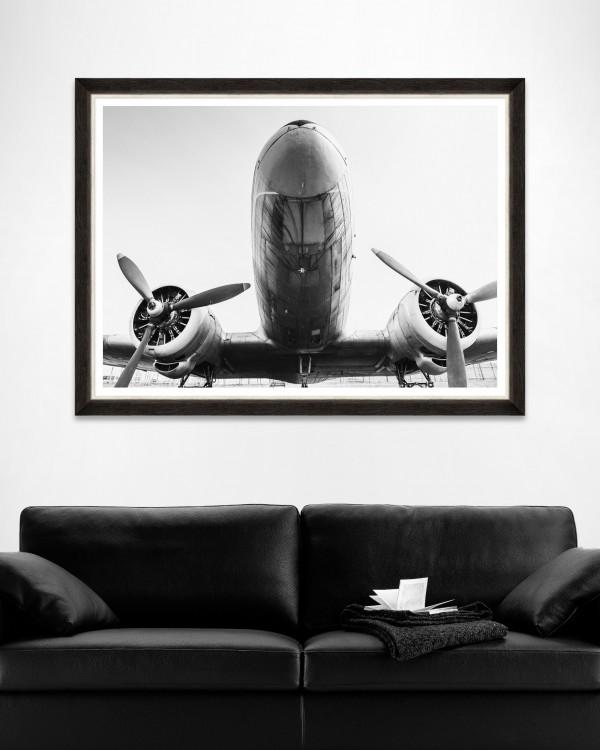 ANTIQUE GIANT Framed Art