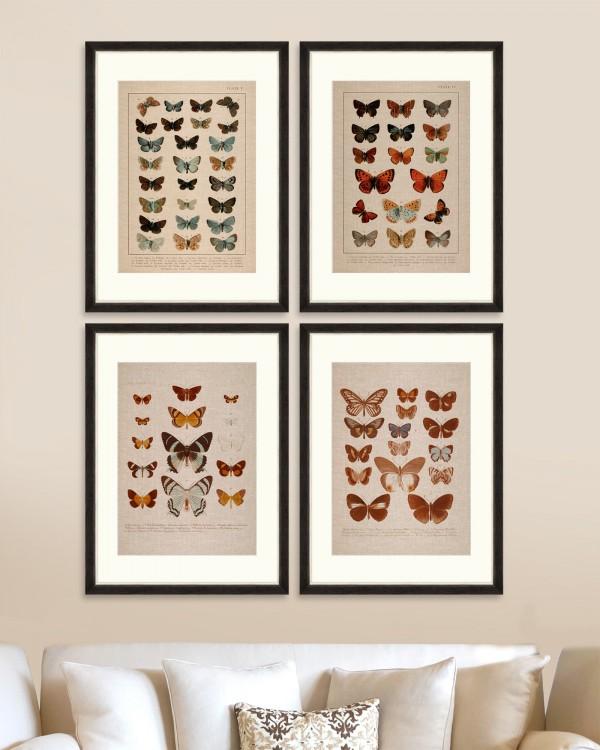 BUTTERFLIES PLATE Set of 4 Framed art