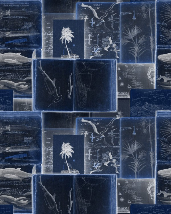 SEAMAN'S JOURNAL indigo Wallpaper