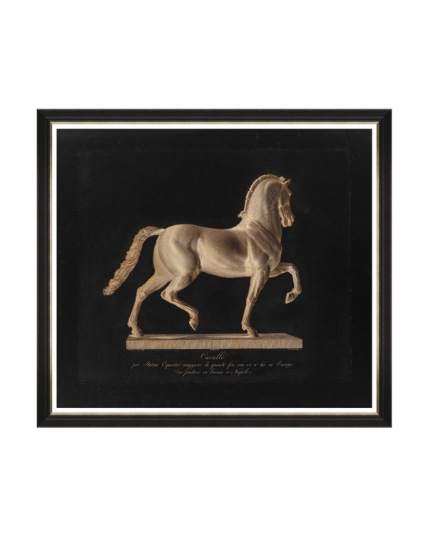 CAVALLO NERO BY MARCHETTI Framed Art