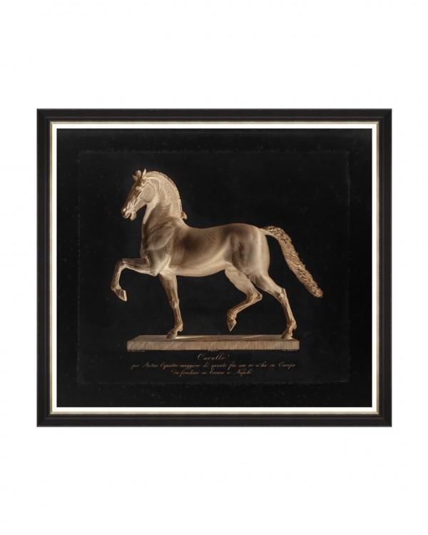 CAVALO BY MARCHETTI Framed Art
