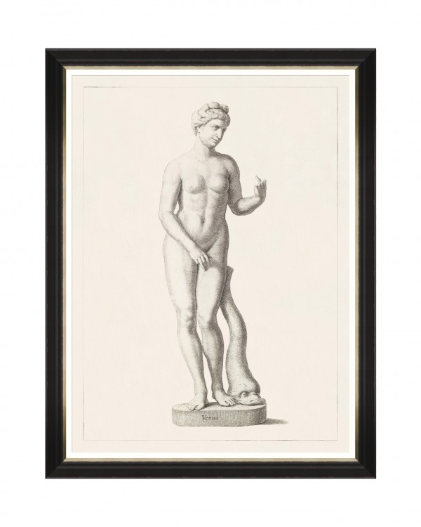 GREEK GODDESS AND GODS - VENUS Framed Art