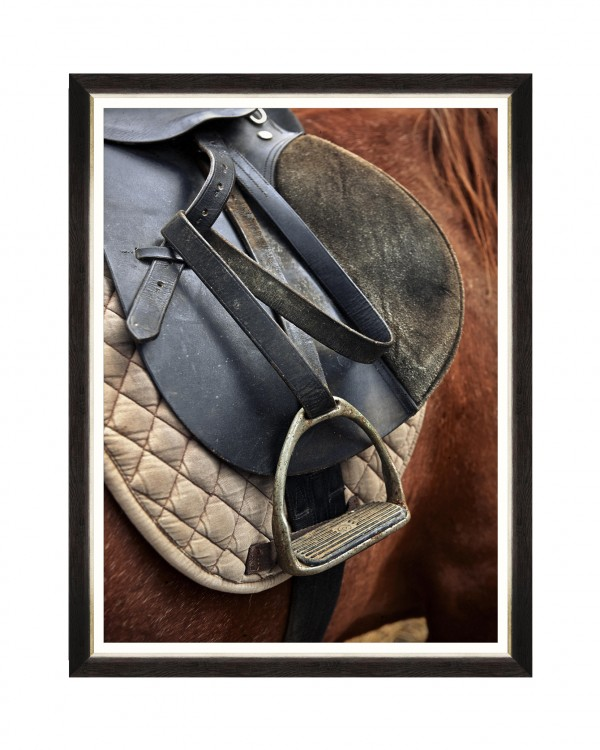 EQUITATION I Framed Art