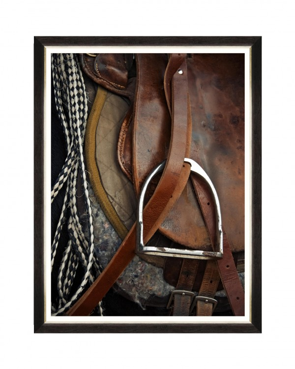 EQUITATION III Framed Art