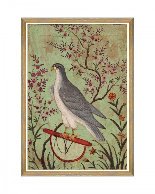 FALCON ON A PERCH Framed Art