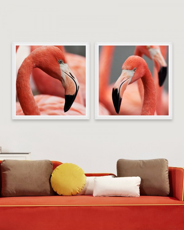FLAMINGO HEADS Set of 2 Framed art