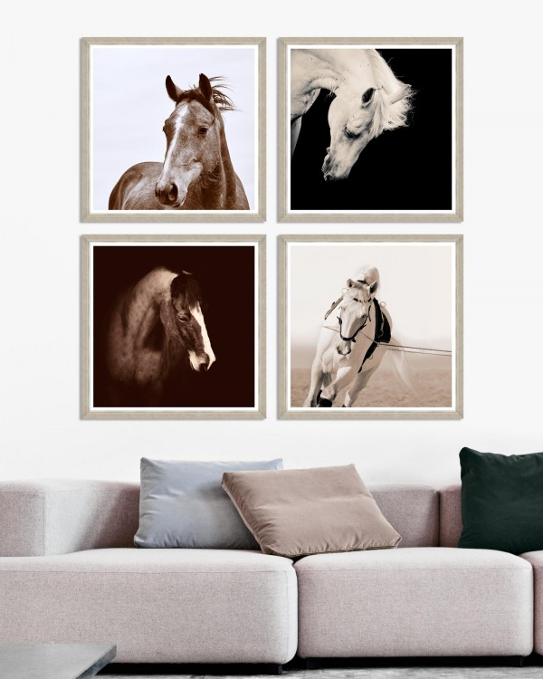 HORSE PORTRAITS Set of 4 Framed art