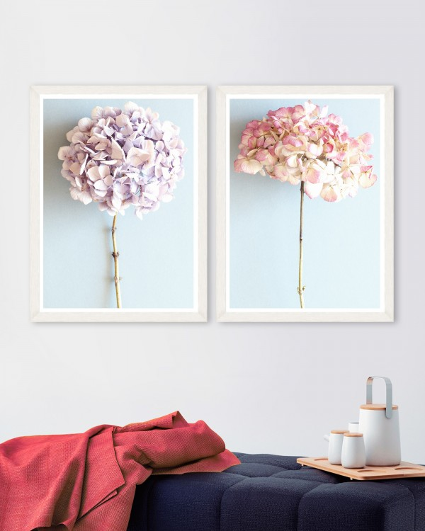 HYDRANGEAS Set of 2 Framed art