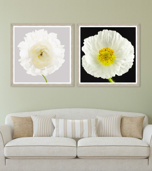 POPPY & RANUNCULUS Set of 2 Framed art