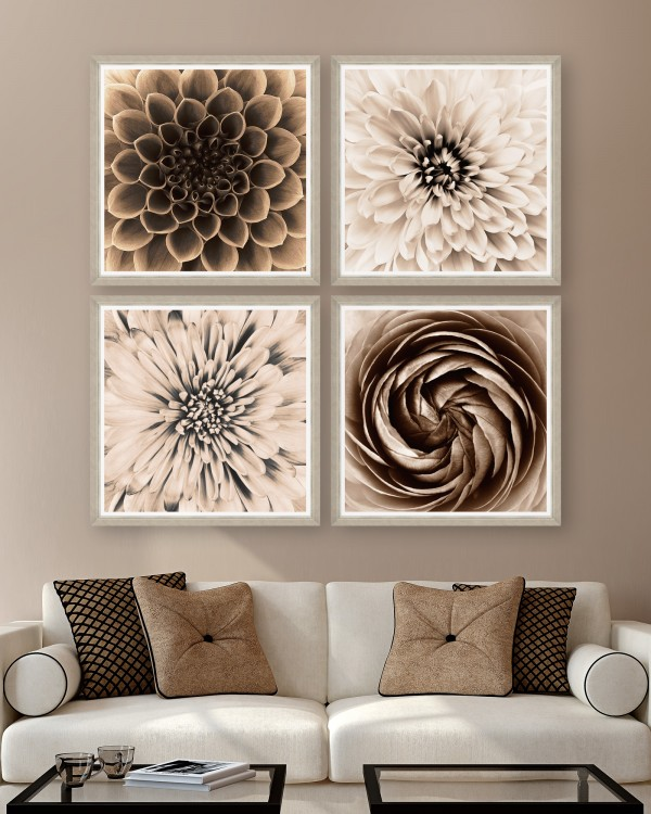 SEPIA DAHLIAS Set of 4 Framed art