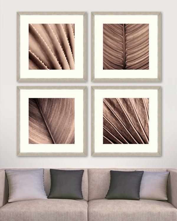 SEPIA PALM TEXTURE Set of 4 Framed art
