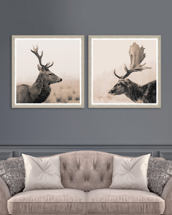 STAG PORTRAITS Set of 2 Framed art