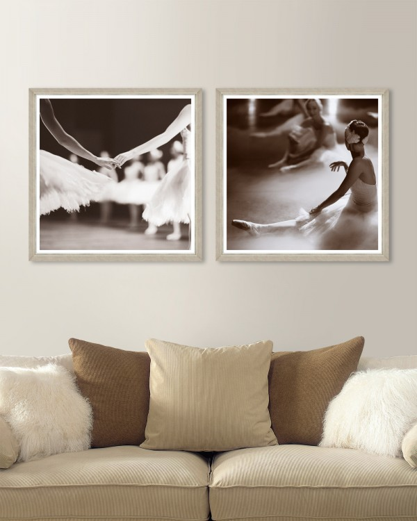 SWAN LAKE Set of 2 Framed art