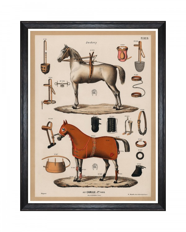 THE RIDING EQUIPMENT I Framed Art