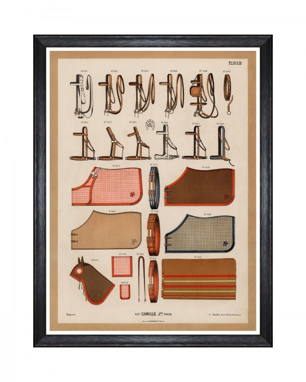 THE RIDING EQUIPMENT II Framed Art