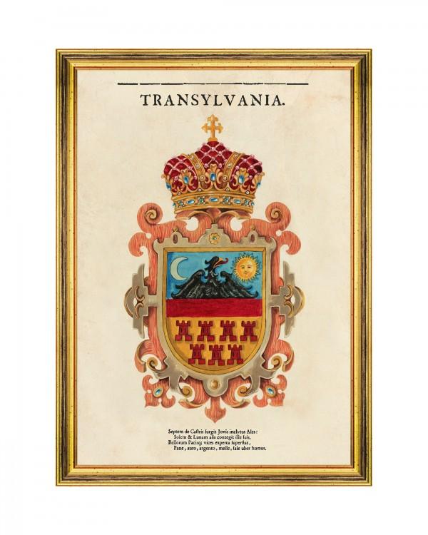 TRANSYLVANIA SAXON CREST Framed Art