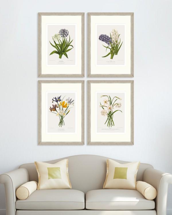 VINTAGE FLOWER PLATES Set of 4 Framed art