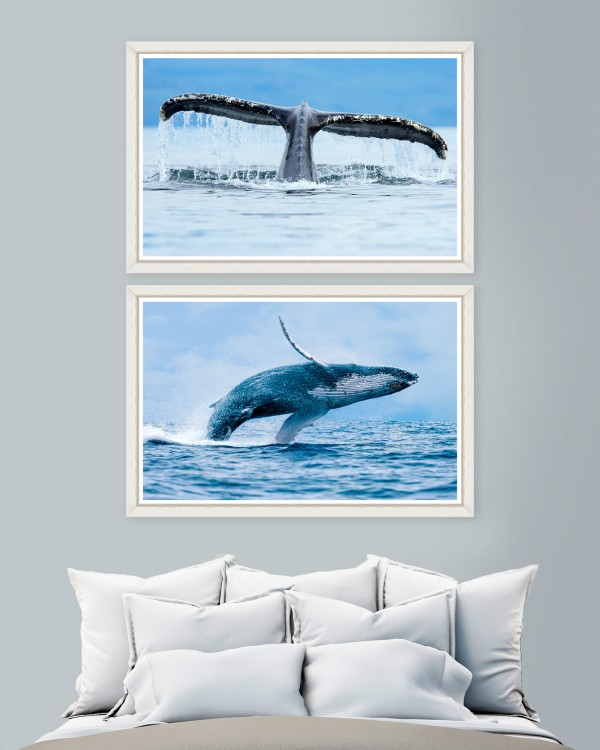 WHALES Set of 2 Framed art