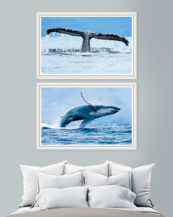 WHALES Set of 2 Framed art