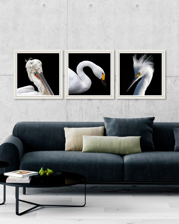 WHITE BIRDS Set of 3 Framed art