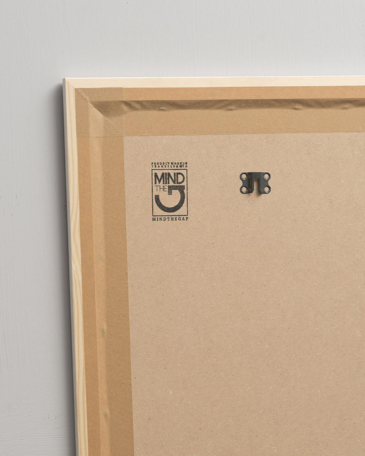 FLORAL Set of 2 Framed art