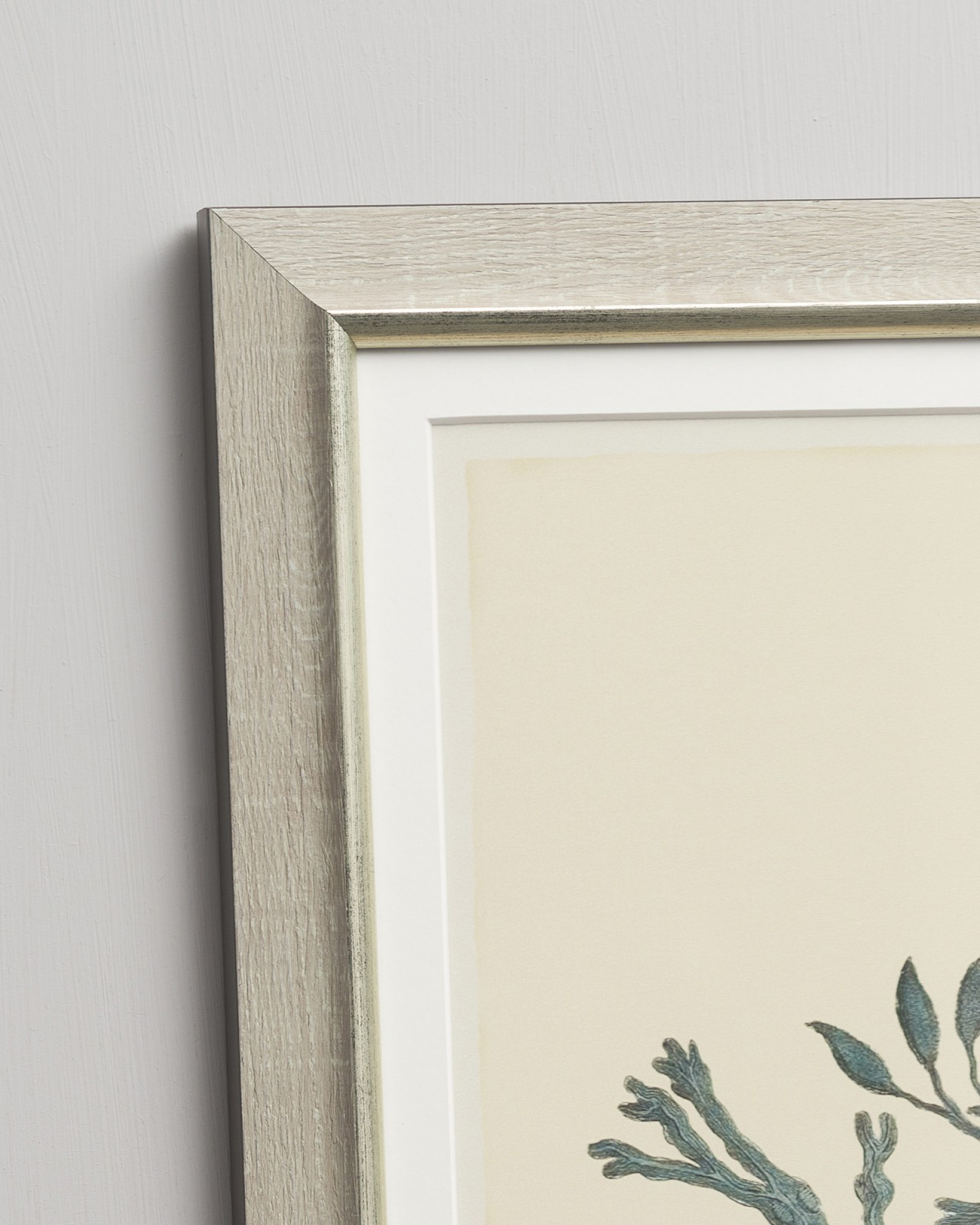 SEPIA DAHLIAS Set of 4 Framed art