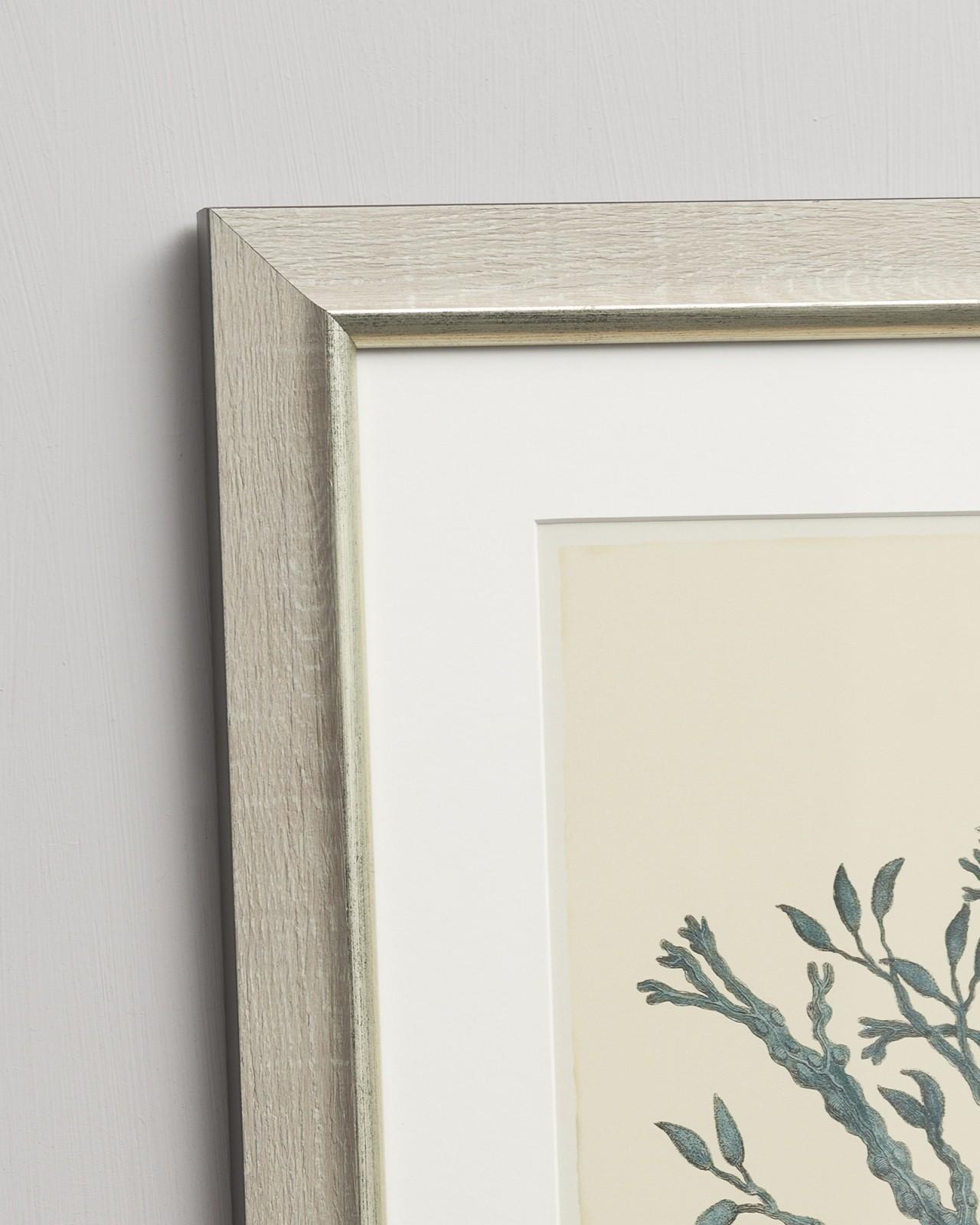 VINTAGE FRUIT PLATES Set of 6 Framed art
