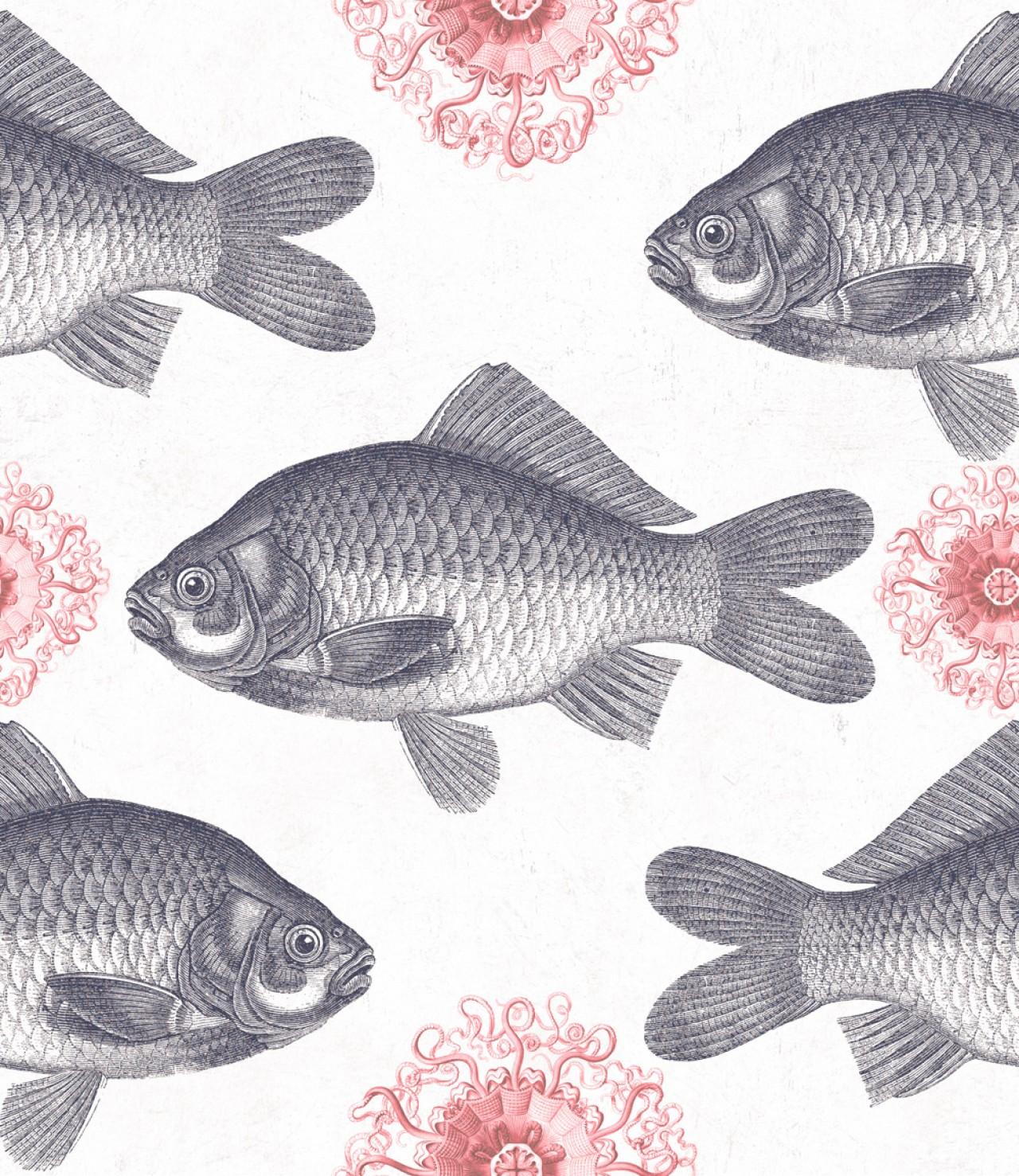 FISH Neutral Premium Wallpaper