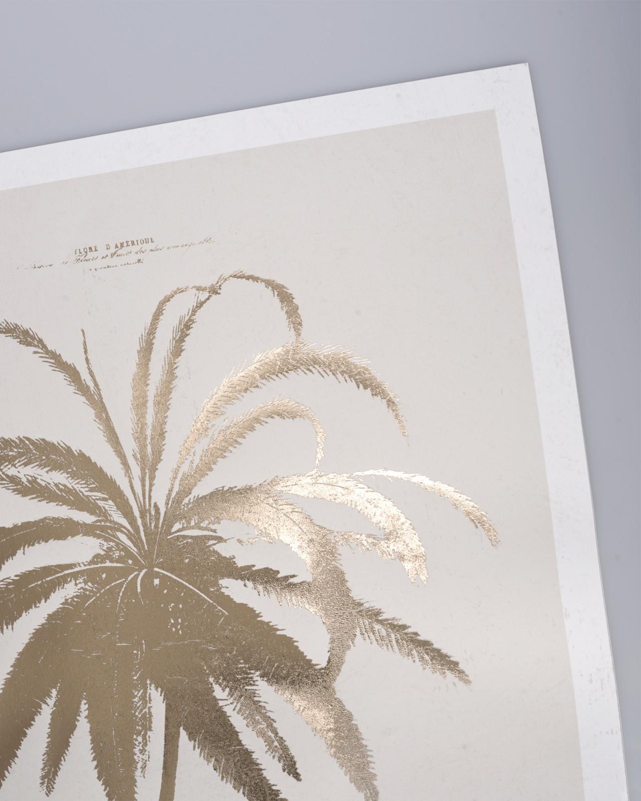 LE COCOTIER Framed Art