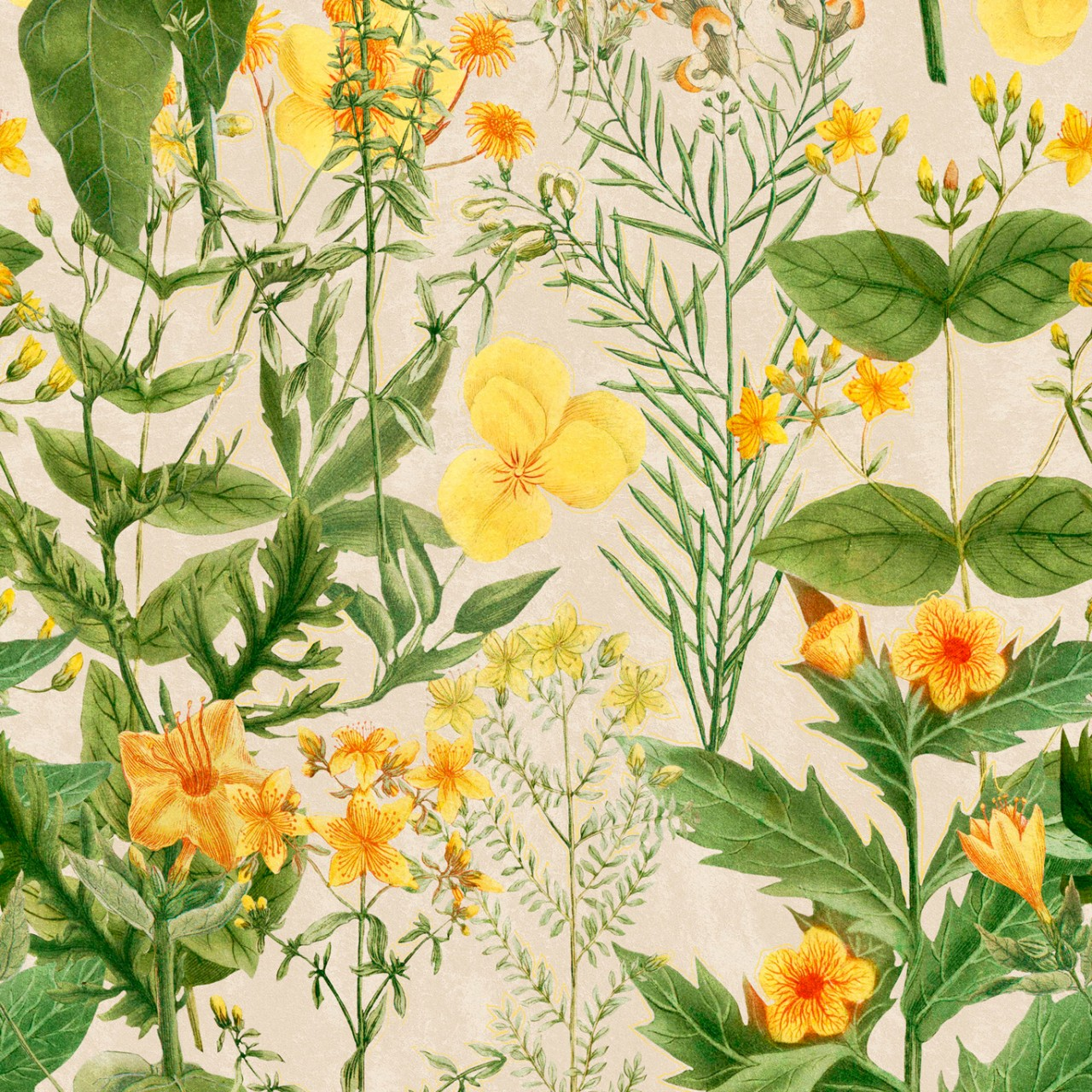 MIMULUS Wallpaper