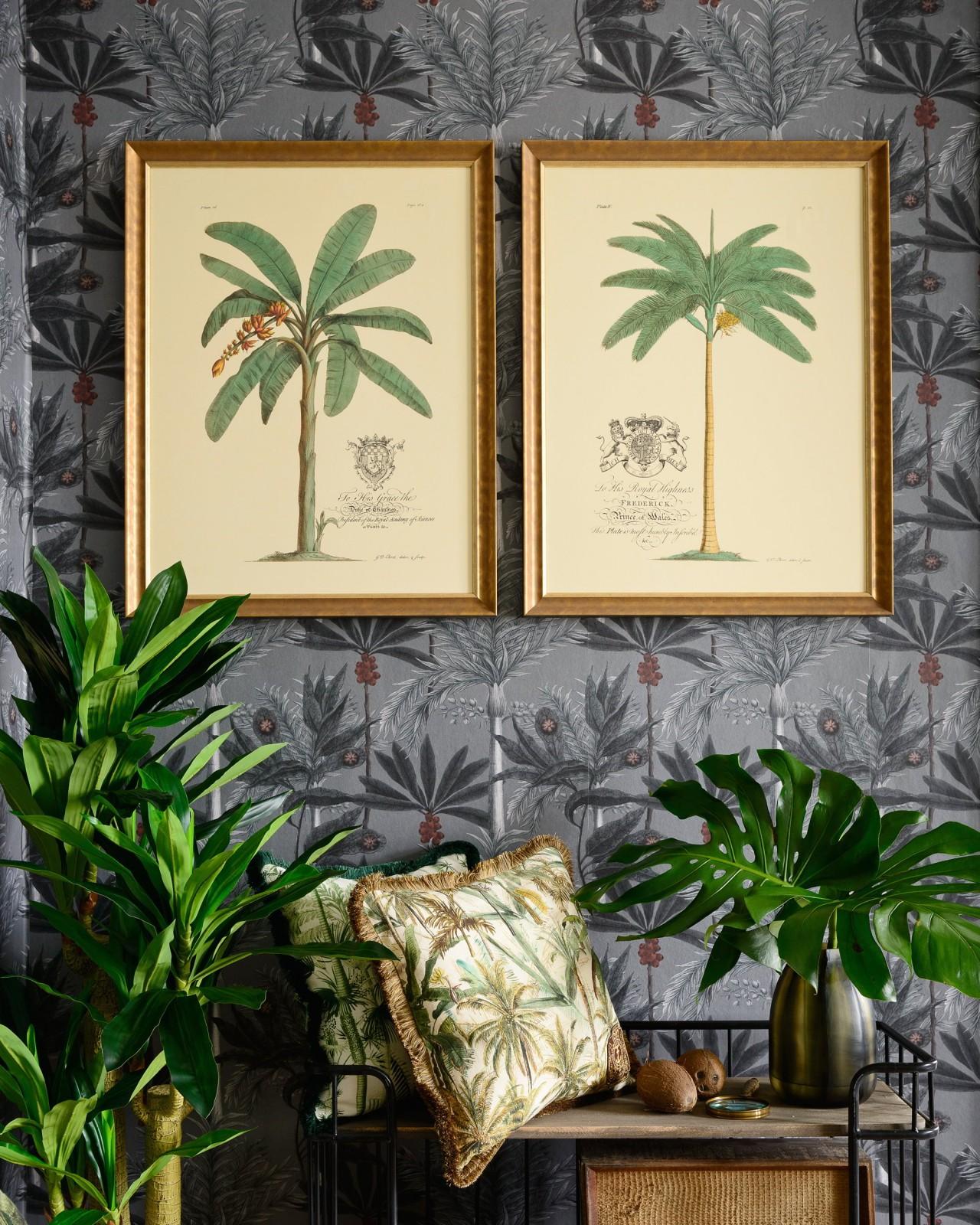 MUSSA AND PALMA - MUSSA PARADISIACA Framed Art