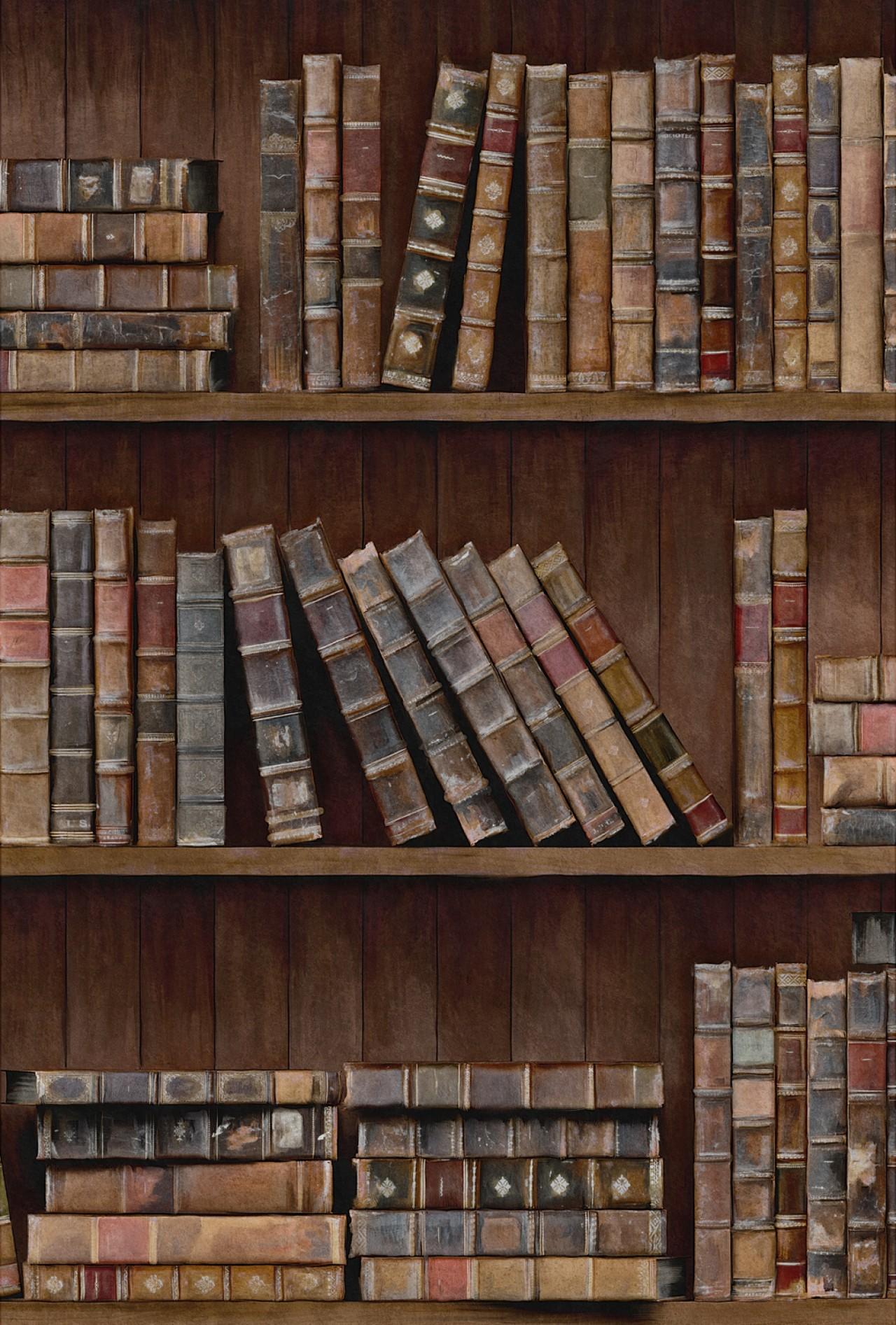 BOOK SHELVES Premium Wallpaper