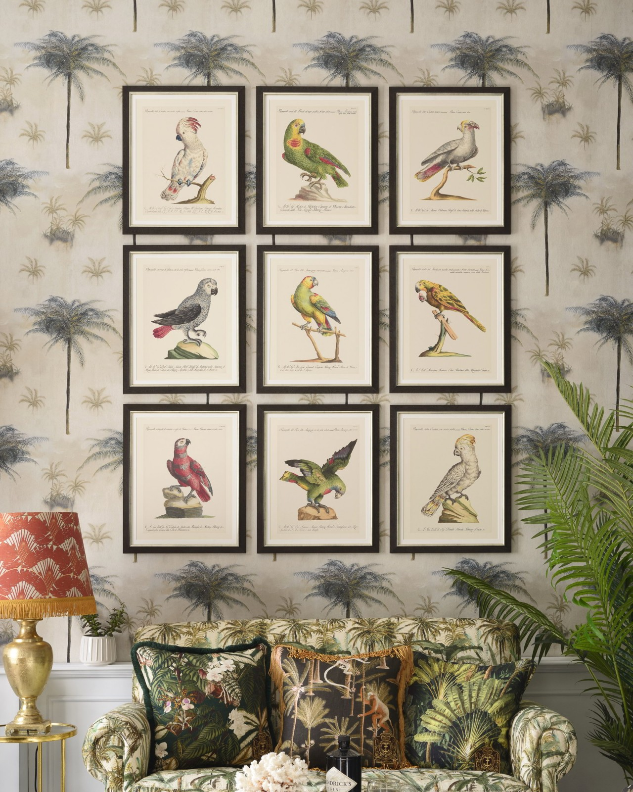 PARROTS OF BRAZIL I Framed Art