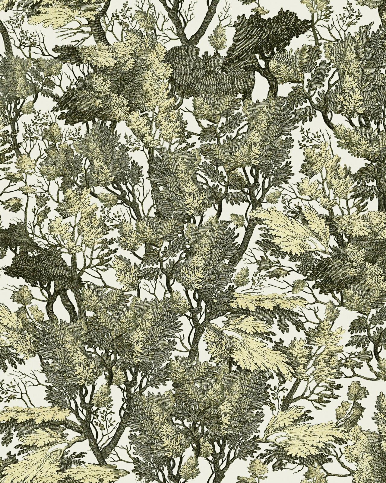 TREE FOLIAGE Wallpaper