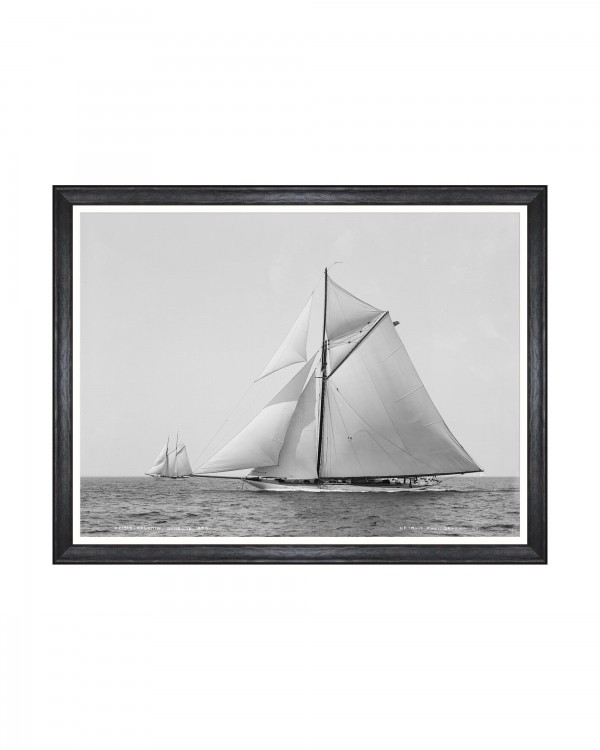 AMERICA'S CUP - COLONIA 1895 Framed Art