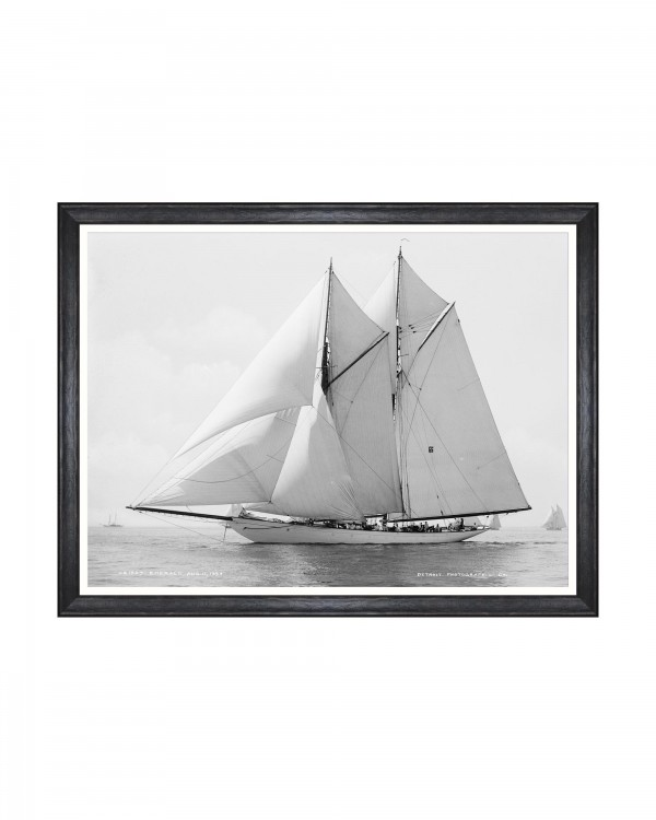 AMERICA'S CUP - EMERALD 1894 Framed Art