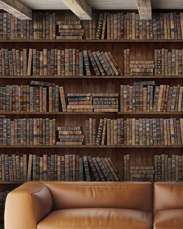 BOOK SHELVES Premium Wallpaper