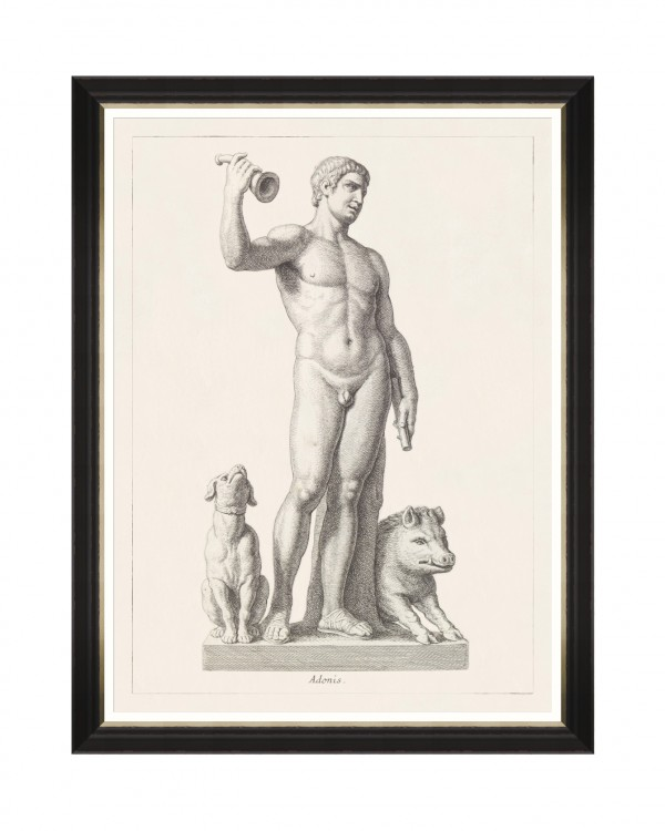 GREEK GODDESS AND GODS - ADONIS Framed Art