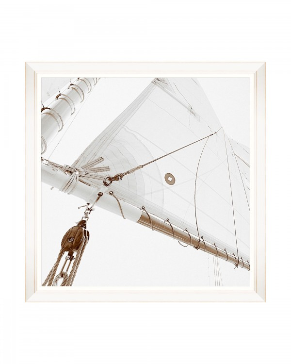 SAILING HIGH II Framed Art