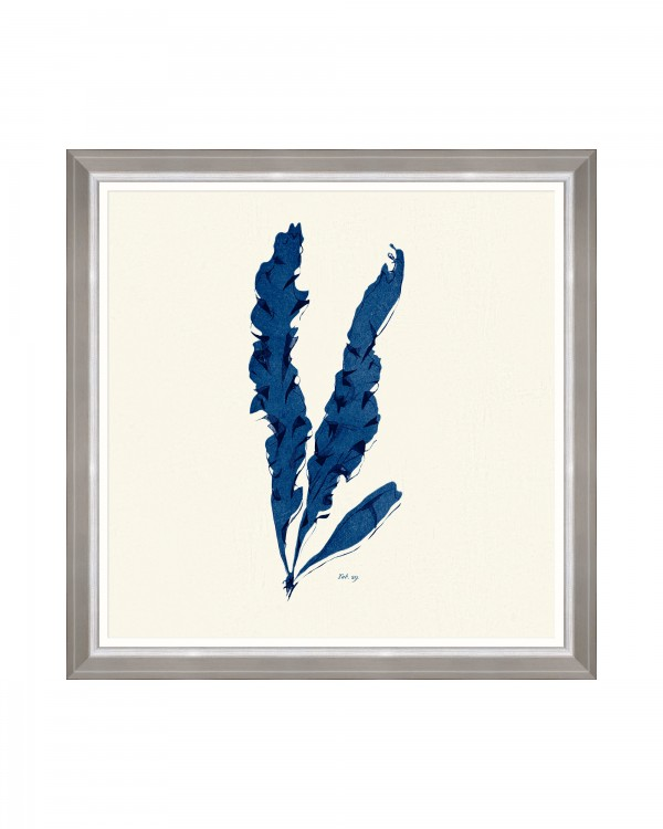 SEAWEED INDIGO IV Framed Art