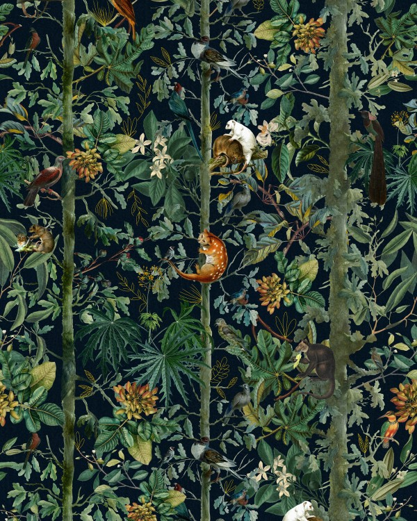 WILDLIFE OF PAPUA Dark Wallpaper