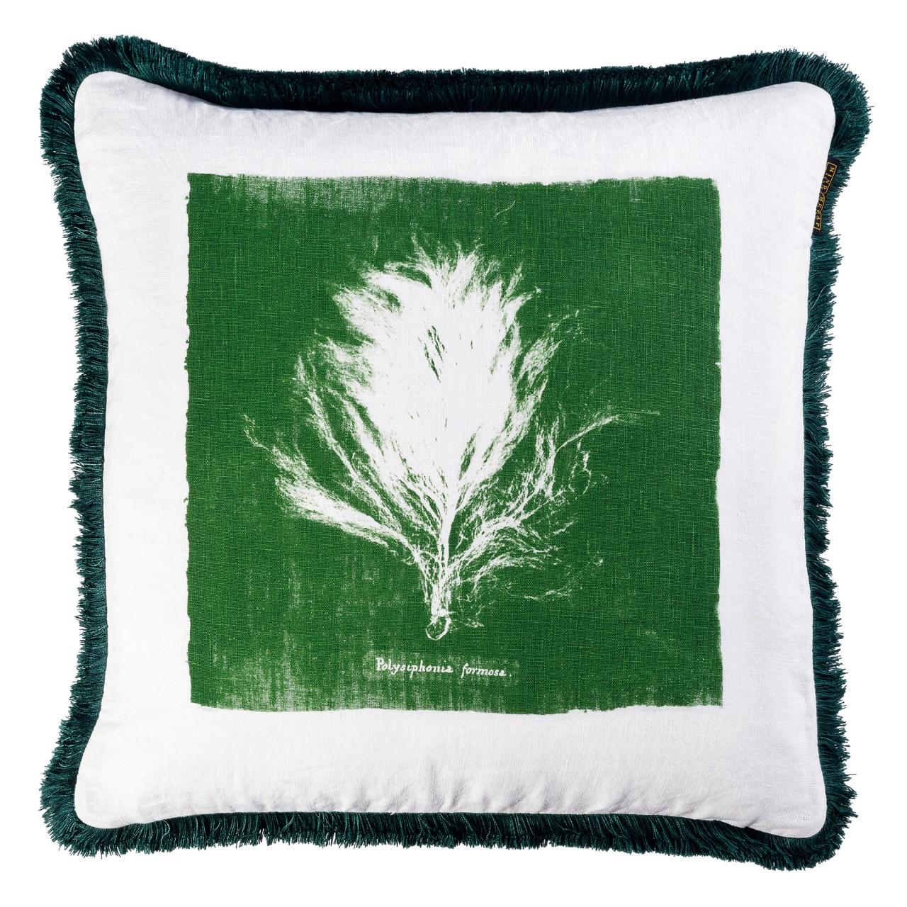 ALGAE II Cushion