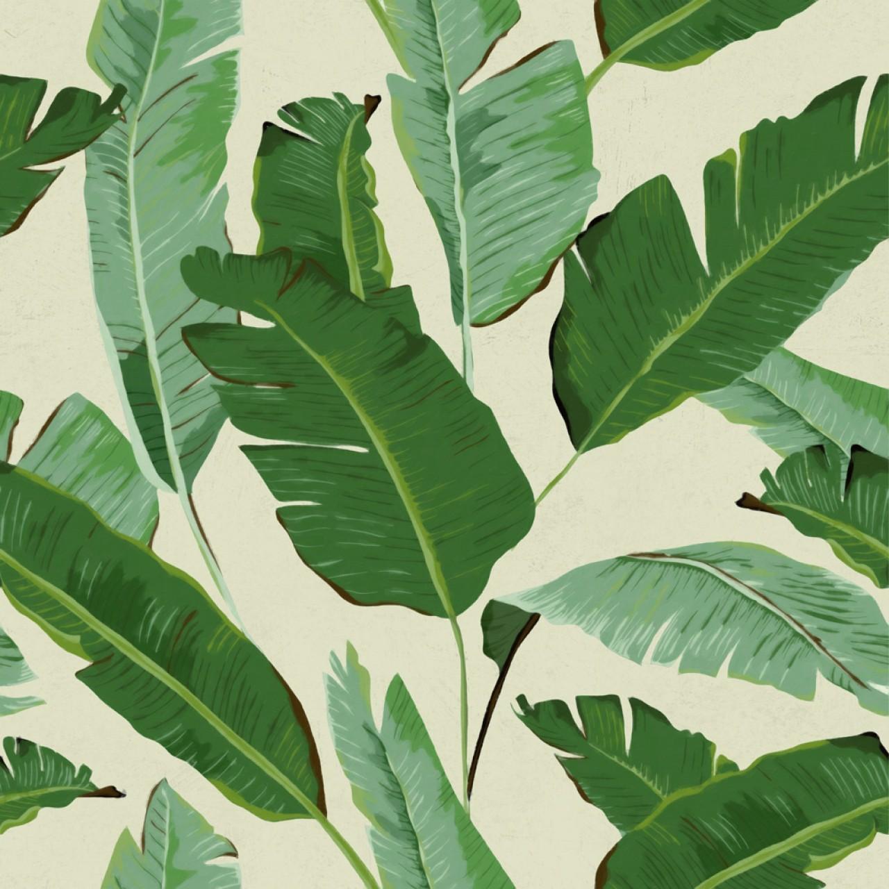 BANANA LEAVES Premium Wallpaper