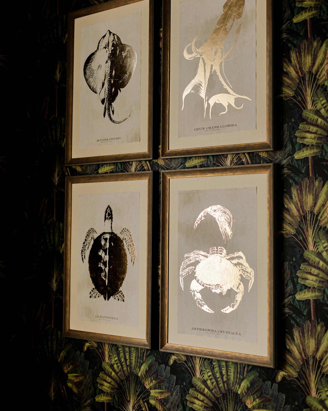 CARIBBEAN SEA LIFE - HIPPOCAMPUS Framed Art
