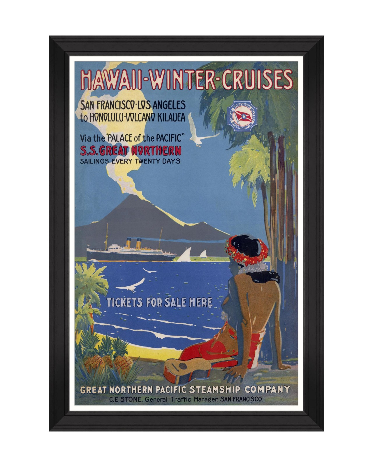 CARIBBEAN TRAVELS - HAWAII WINTER CRUISES Framed Art