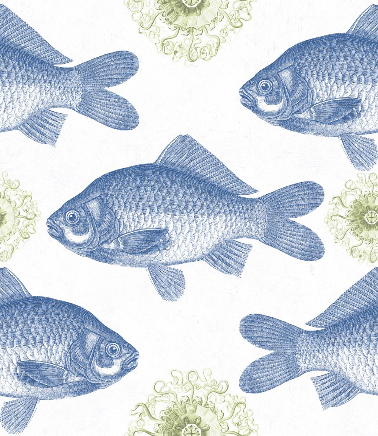 FISH Blue Tapet Premium