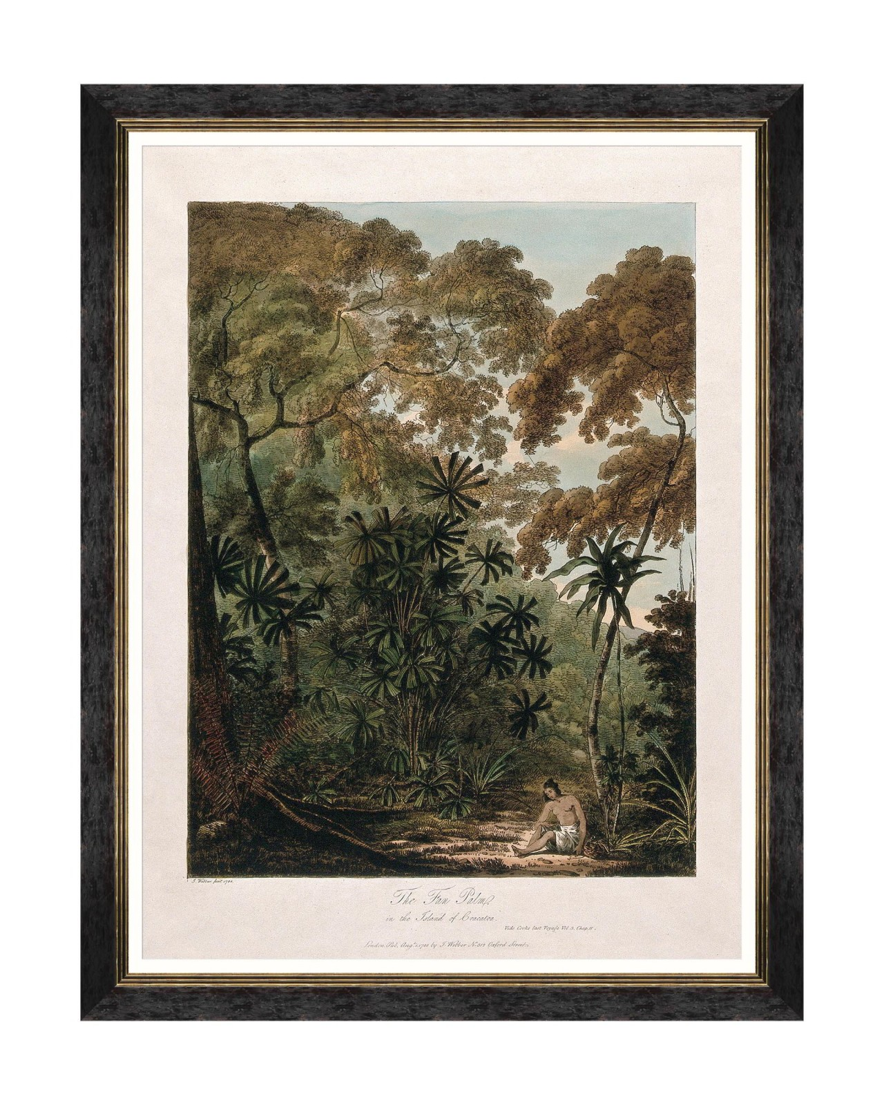 TREES OF KRAKATOA - THE FAN PALM Framed Art