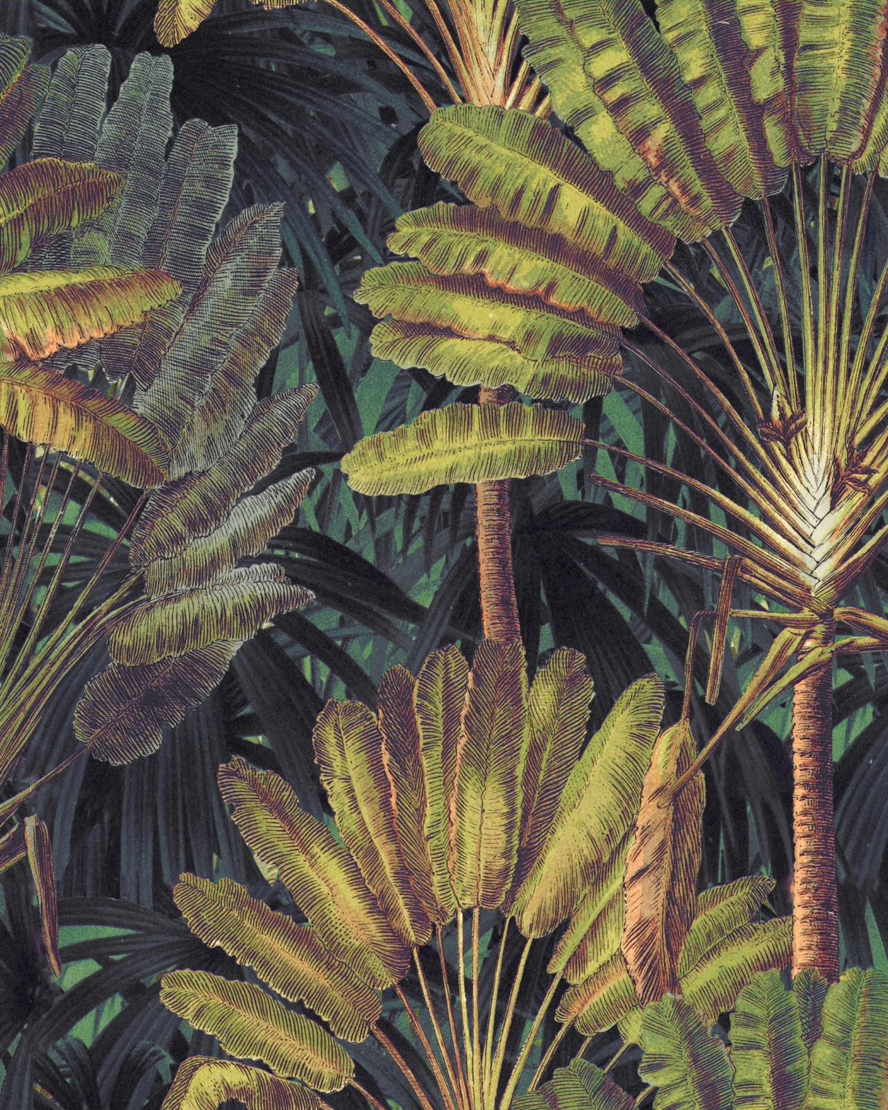 TRAVELLER'S PALM Sunset Wallpaper
